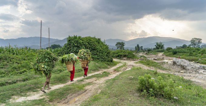 Seasonal Migration and Agricultural Labor Markets in Nepal